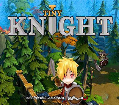 دانلود ترینر سالم بازی Tiny Knight